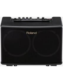 Roland AC 40 Acoustic Amplifier