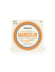D'Addario EJ 67 mandolin loopend