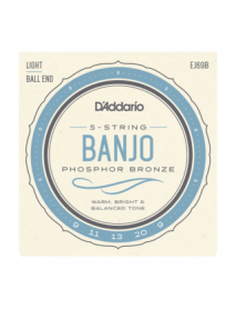 D'Addario EJ 69B 5-string ball-end banjo
