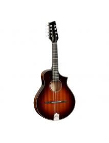 Tanglewood TS MM LE Sanden mandolin