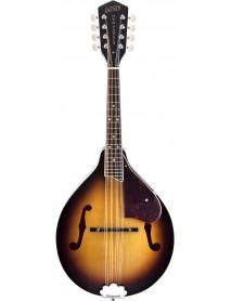 Gretsch New Yorker G 9300  Standard Mandolin