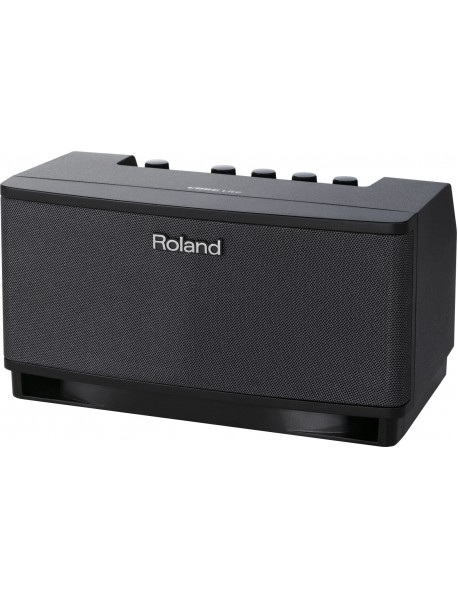 Roland Cube Lite Amplifier