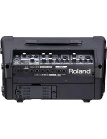 Roland Street Cube EX 50 Watts Portable Battery Amplifier