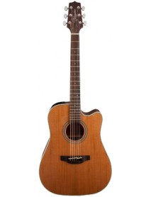 Takamine GD 20 CE NS Electro Acoustic