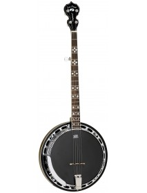 Tanglewood TWB C 5,  5 String Banjo