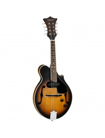 Tanglewood TWM F VS Electro Acoustic Mandolin